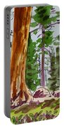 Sequoia Park - California Sketchbook Project  Portable Battery Charger