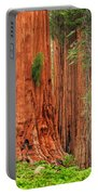 Sequoias Portable Battery Charger by Inge Johnsson