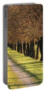 Serene Lane Portable Battery Charger