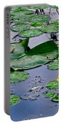 Serene To The Extreme Portable Battery Charger by Frozen in Time Fine Art Photography