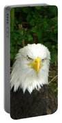 Serious Eagle Eye Portable Battery Charger