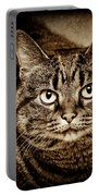 Serious Tabby Cat Portable Battery Charger