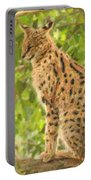 Serval Leptailurus Serval Portable Battery Charger