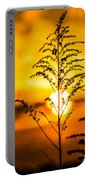 Setting Sun Portable Battery Charger by Parker Cunningham