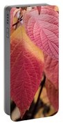 Shades Of Autumn Portable Battery Charger