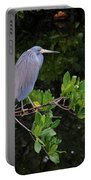 Shades Of Blue And Green Portable Battery Charger