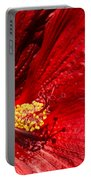 Shades Of Red Portable Battery Charger