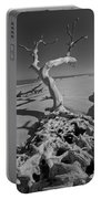 Shadows At Driftwood Beach Portable Battery Charger by Debra and Dave Vanderlaan