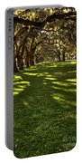 Shadows Of Emmet Park Savannah Portable Battery Charger