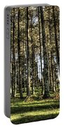 Shadows Of The Larch Forest Sunset No2 Portable Battery Charger