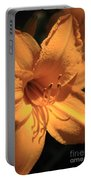 Day Lily Shadows Portable Battery Charger