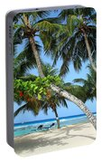 Shady Palms Portable Battery Charger