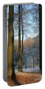 Light And Shadows In Wintertime Portable Battery Charger