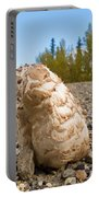 Shaggy Mane Mushroom Grows Through Gravel Surface Portable Battery Charger