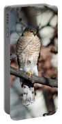 Sharp-shinned Hawk 3 Portable Battery Charger