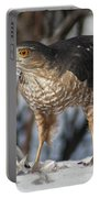 Sharp-shinned Hawk And Feather Portable Battery Charger