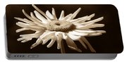 Shasta Daisy Flower Sepia Portable Battery Charger
