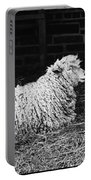 Sheep 2 Portable Battery Charger