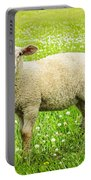 Sheep In Summer Meadow Portable Battery Charger