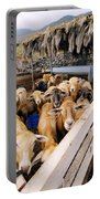 Sheeps Enclosure Portable Battery Charger
