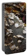 Shelf Mushrooms In Autumn Portable Battery Charger