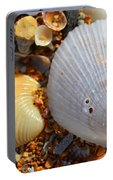 Shells On Sand2 Portable Battery Charger by Riad Belhimer