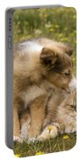 Sheltie Puppy And Persian Cat Portable Battery Charger