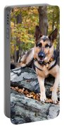 Shepherd In The Fall Portable Battery Charger