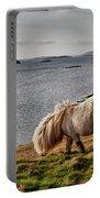 Shetland Pony At Shore  Shetland Portable Battery Charger