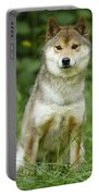 Shiba Inu Dog Portable Battery Charger