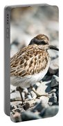 Shorebird Beauty Portable Battery Charger