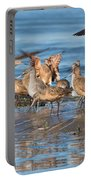 Shorebirds Flocking At Bodega Bay Portable Battery Charger