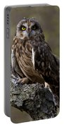 Short-eared Owl Asio Flammenus Portable Battery Charger