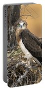 Short-toed Snake Eagle Circaetus Gallicus Portable Battery Charger