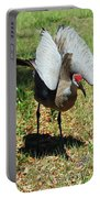 Show Off Portable Battery Charger by Aimee L Maher Photography and Art Visit ALMGallerydotcom