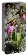 Showy Lady's Slipper 2 Portable Battery Charger