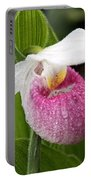 Showy Lady's Slipper Portable Battery Charger