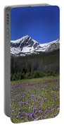Showy Penstemon Wildflowers Sawtooth Mountains Portable Battery Charger