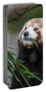 Shrinking Red Panda Portable Battery Charger