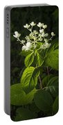 Shrub With White Blossoms Portable Battery Charger