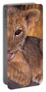 Shy African Lion Cub Wildlife Rescue Portable Battery Charger