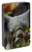 Shy Koala Painting By Dan Sproul
