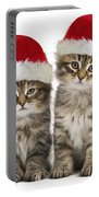 Siberian Kittens In Hats Portable Battery Charger