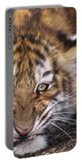 Siberian Tiger Cub Panthera Tigris Altaicia Wildlife Rescue Portable Battery Charger