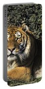 Siberian Tiger Endangered Species Wildlife Rescue Portable Battery Charger