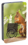 Side View Of Red Squirrel Playing Portable Battery Charger