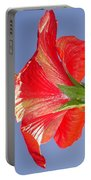 Side View Of Scarlet Red Hibiscus In Bright Light Portable Battery Charger