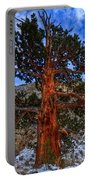 Sierra Pine Portable Battery Charger
