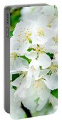 Signs That Spring Has Sprung Portable Battery Charger