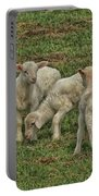 Silence Of The Lambs Portable Battery Charger